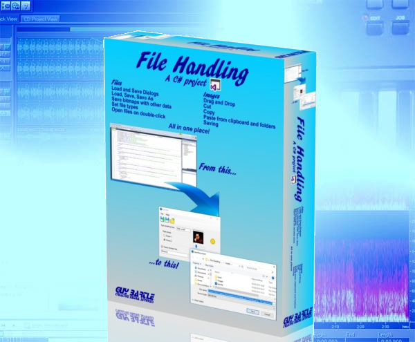 File Handling C# project background